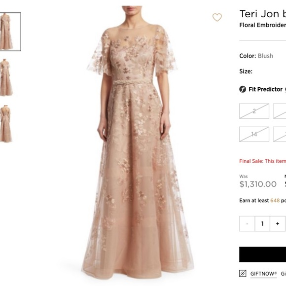 f026c1c2802 NWT Teri Jon Embroidered Gown